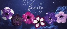 """<span class=""""field-content"""">SKY Family</span>"""